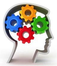 Brain 1.2.jpg