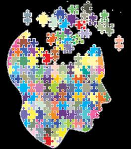 brainpuzzle-264x300